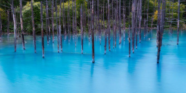 L'étang bleu au Japon, la nature à l'état pur